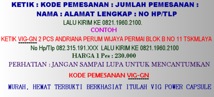 Cara Pemesanan Vig Power Capsule Via SMS